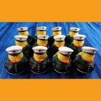 12 US Marine Rubber Ducks in Dress Uniform