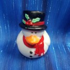 Christmas Frosty the Snow Duck