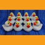 12 Bright Eyed Mummy Halloween Rubber Ducks